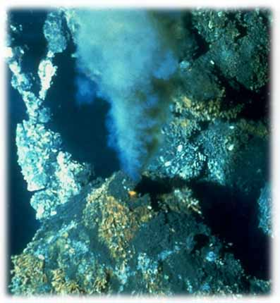 Hydrothermal Vents Hydrothermal Vents